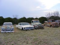 chev53ford62fords